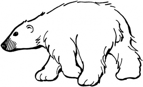 Bear Coloring Pages (10)