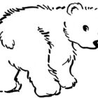 Bear Coloring Pages (23)