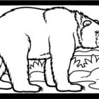Bear Coloring Pages (3)