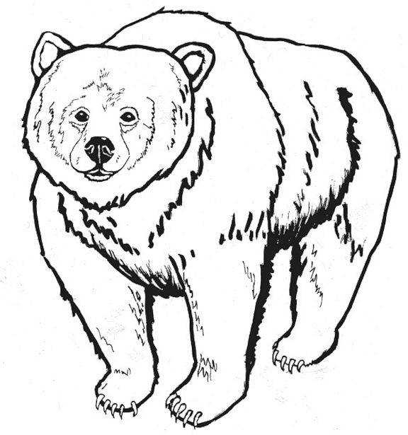 Bear Coloring Pages (4) - Coloring Kids