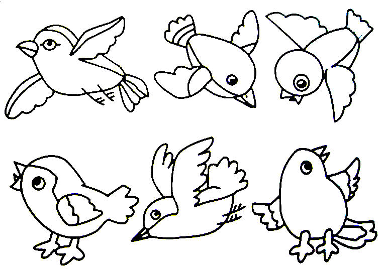 bird coloring pages - Printable Coloring Pages Birds