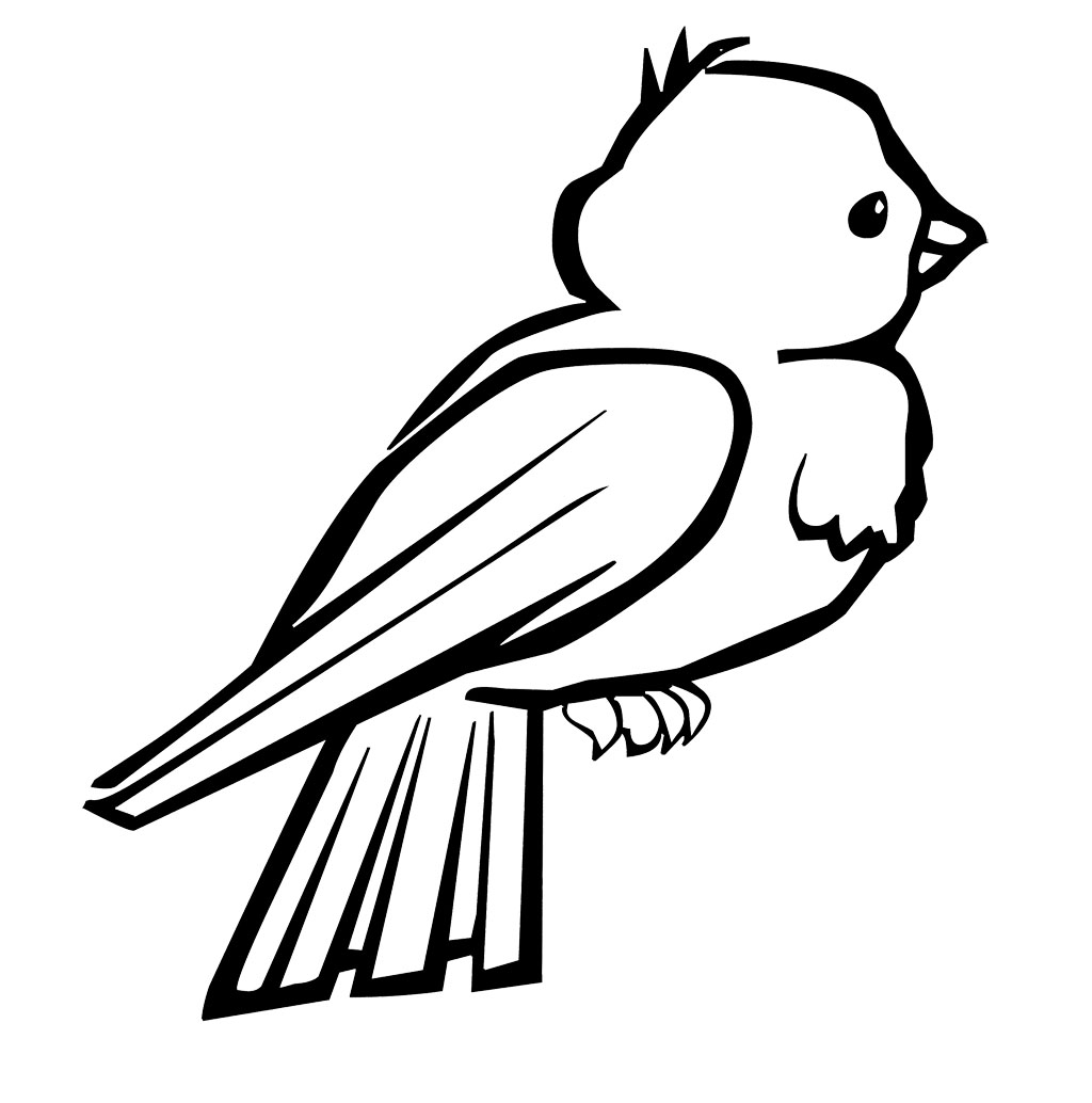 Bird 6 coloring kids for Coloring pages parrot