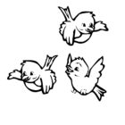 Bird Coloring Pages (5)