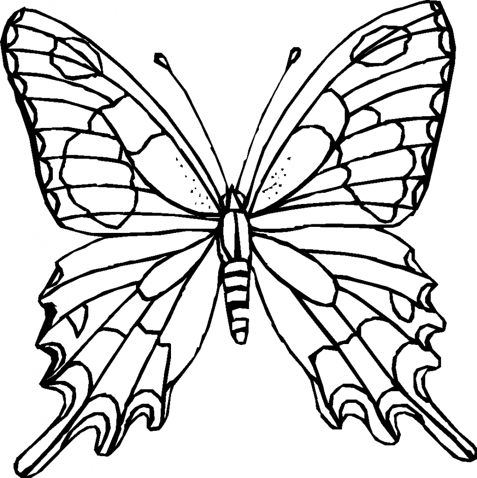 butterfly coloring pages | Coloring Kids