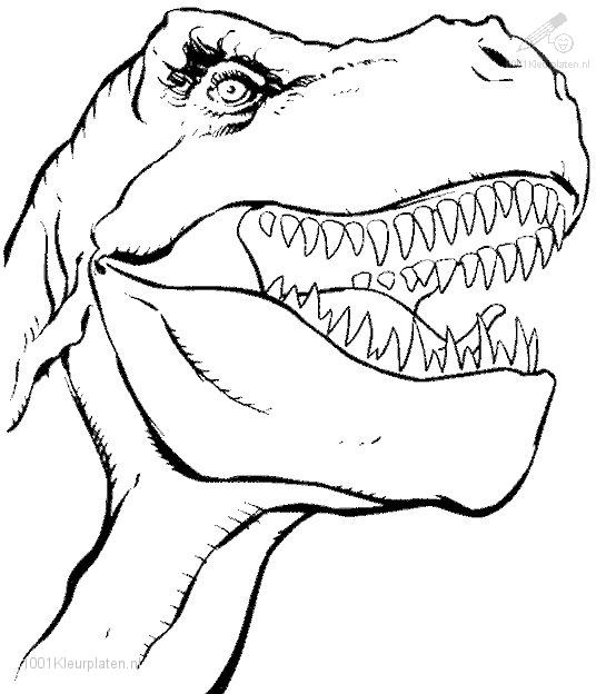 Dinosaur Coloring Pages (4)