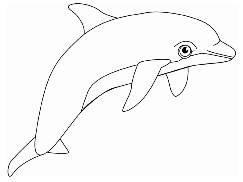 dolphin coloring pages - Dolphins Coloring Pages