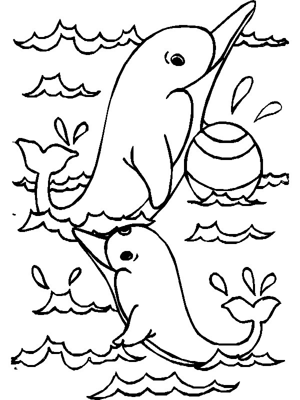 Dolphin Coloring Pages 12 Coloring Kids