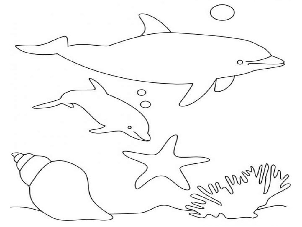 Coloring Pages Hello Kitty Dolphin : Dolphin coloring pages kids