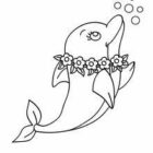 Dolphin Coloring Pages (7)
