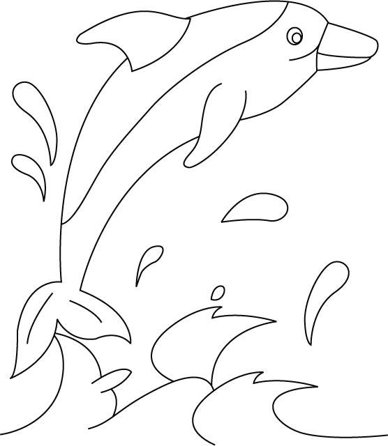 Download Dolphin Coloring Pages 9 Print