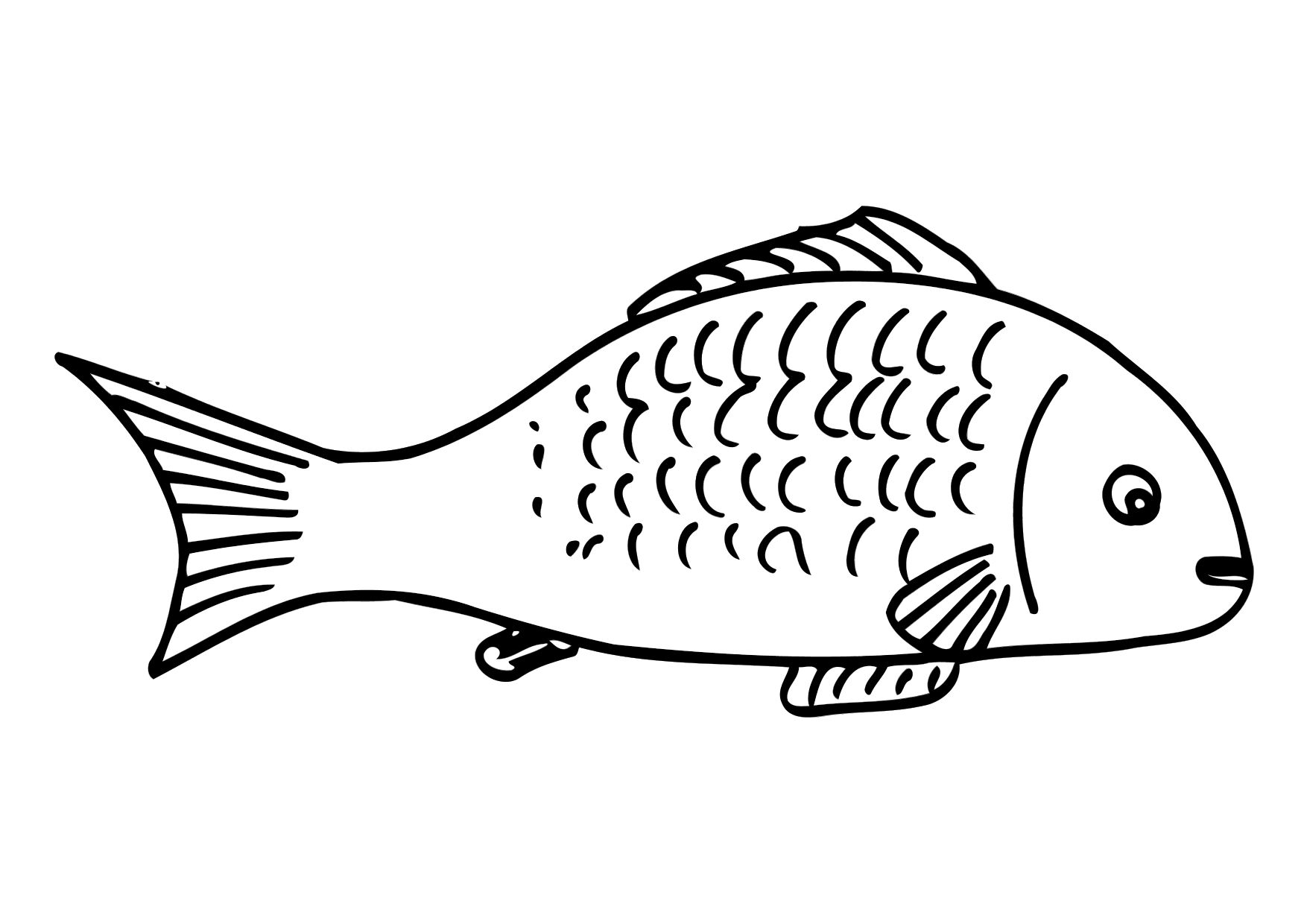 Download Fish Coloring Pages 11