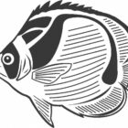 Fish Coloring Pages (28)