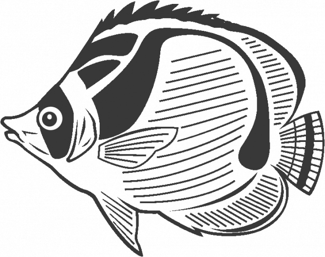 Fish Coloring Pages 28  Coloring Kids