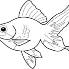 Fish Coloring Pages (3)