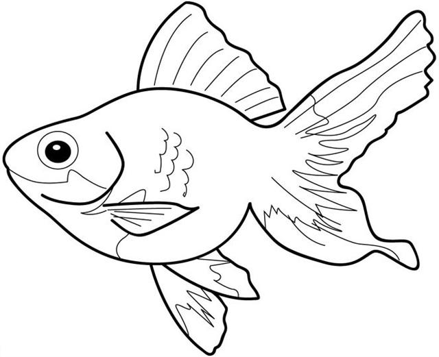 fish coloring pages free - photo#8