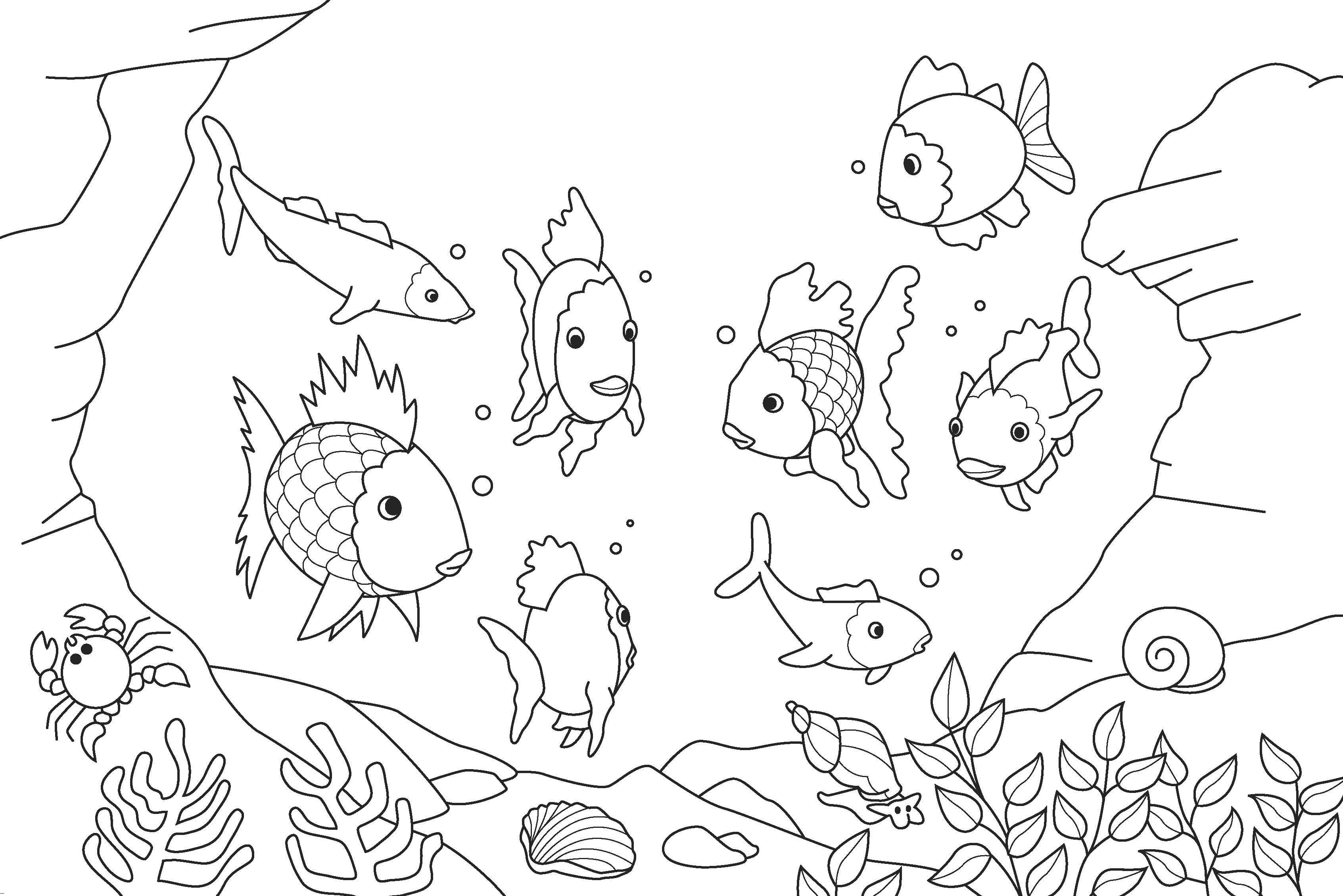 download fish coloring pages 7 - Fish Coloring Pages