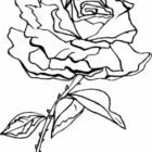 Flower Coloring Pages (3)