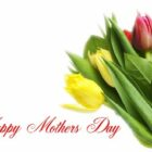 Happy Mother Day Cards (16)