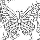image description 140x140 Butterfly Coloring Pages