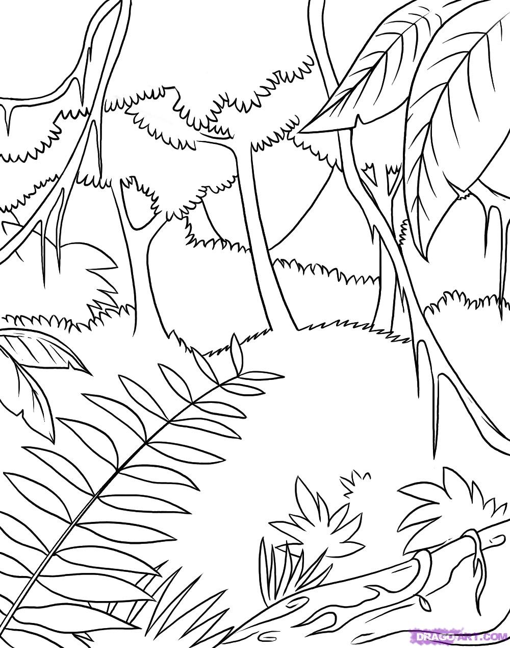 jungle background coloring pages - photo#28