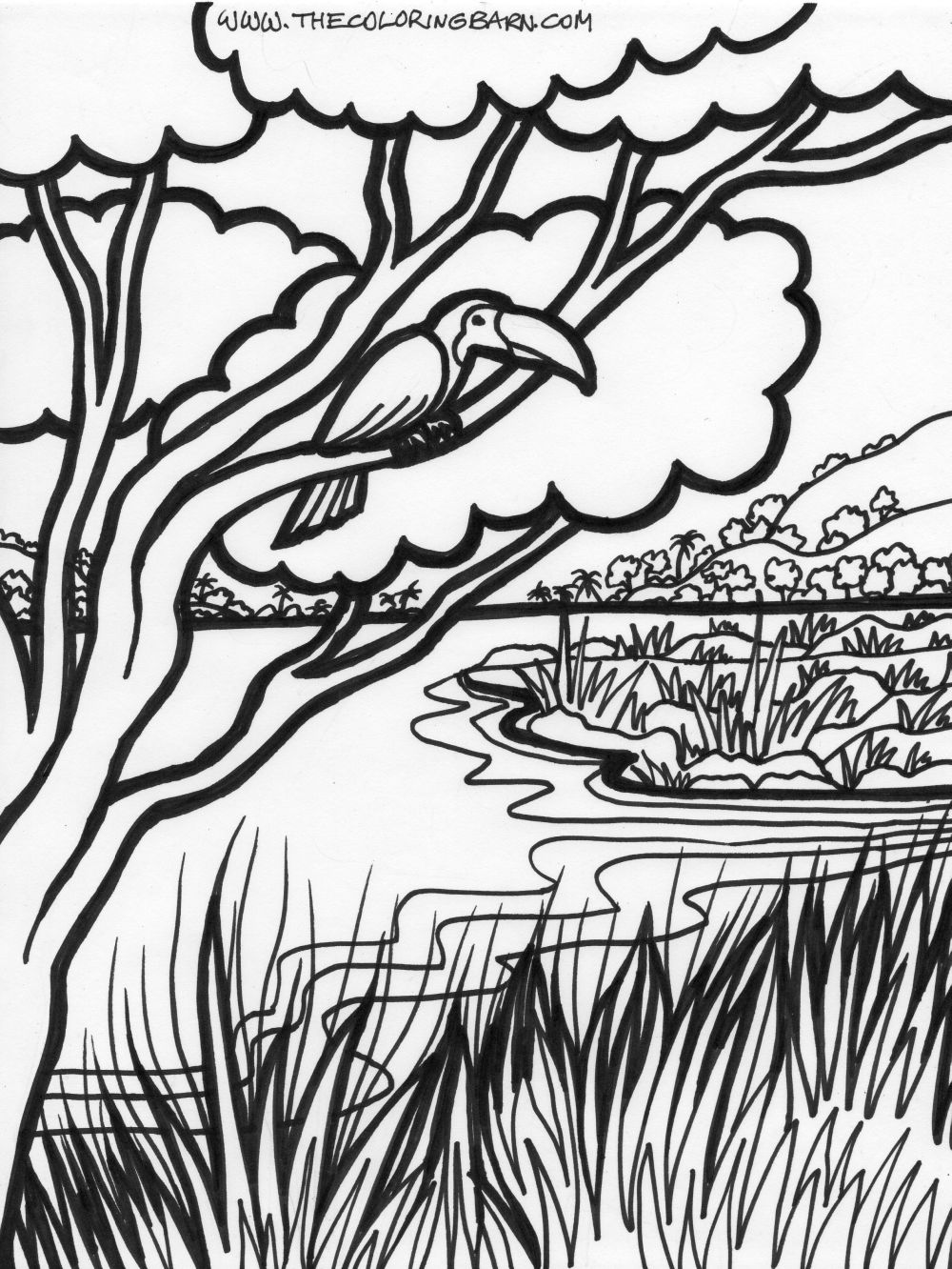 Download Jungle Coloring Pages 22