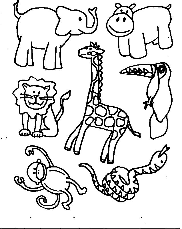 Jungle Coloring Pages 23 Coloring Kids