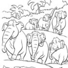 jungle coloring pages 27 140x140 Jungle Coloring Pages