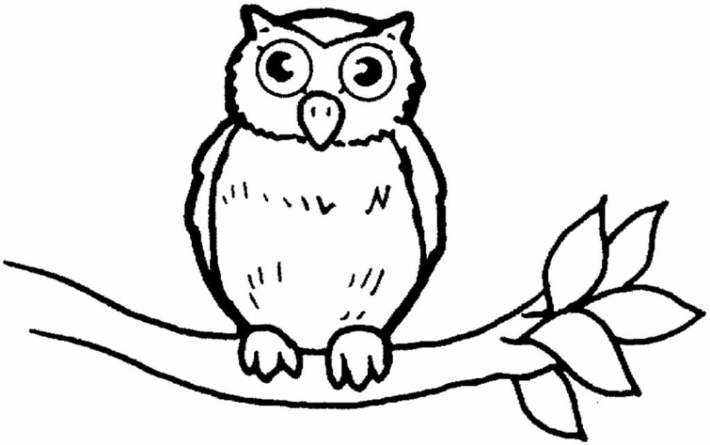bird coloring pages - Bird Coloring Sheet 3