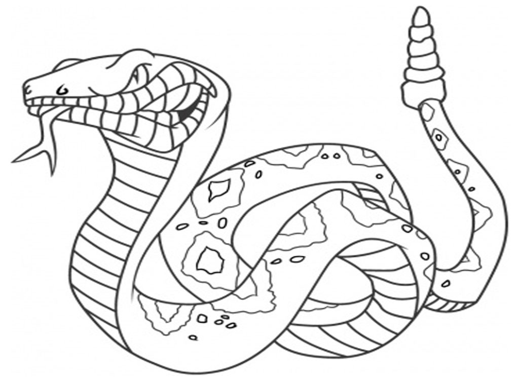 coloring book pages of snakes - photo#13