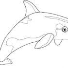 Whales-coloringkids.org.4
