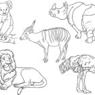 zoo coloring pages 4 140x140 Zoo Coloring Pages
