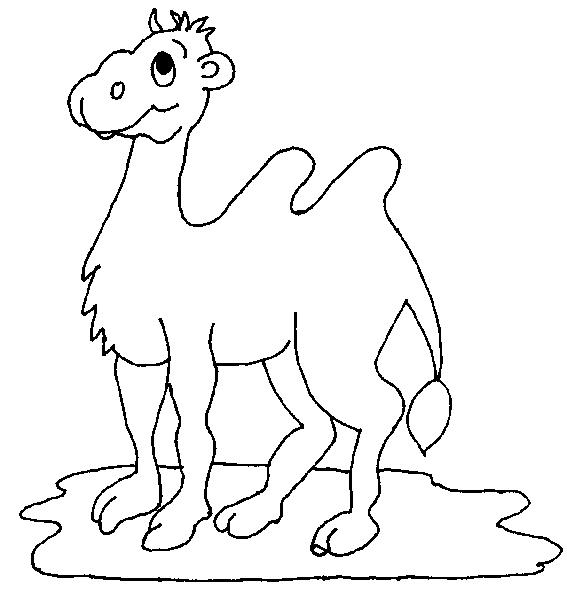 Camels-coloring-page-3