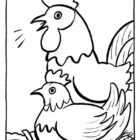 Chickens-coloring-page-19