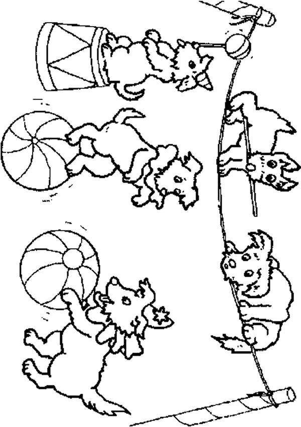 Circus-coloring-page-43