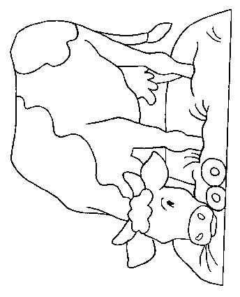Cows-coloring-page-38
