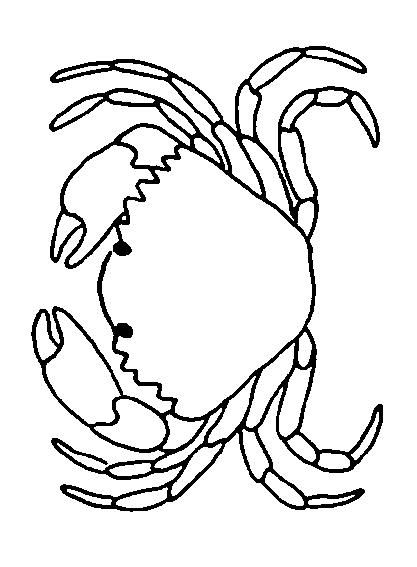 Crabs-coloring-page-13