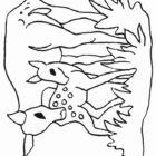 Deers-coloring-page-18