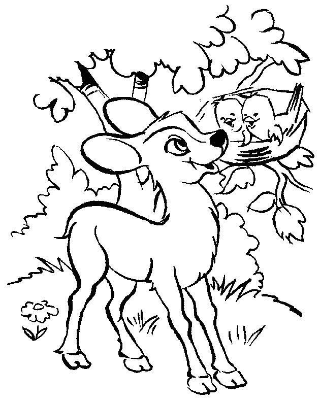 Deers-coloring-page-2