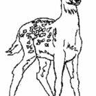 Deers-coloring-page-8