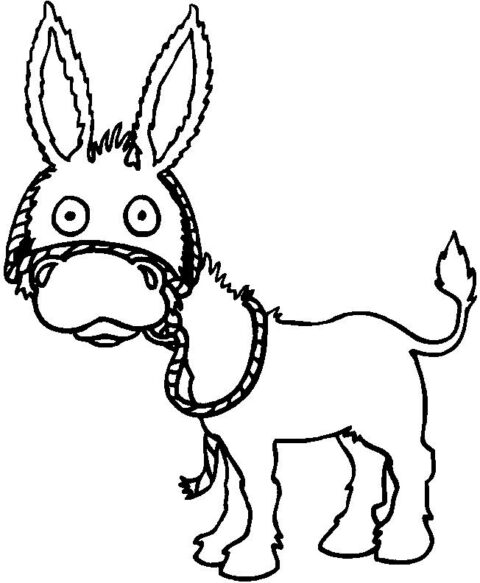 Donkeys-coloring-page-2