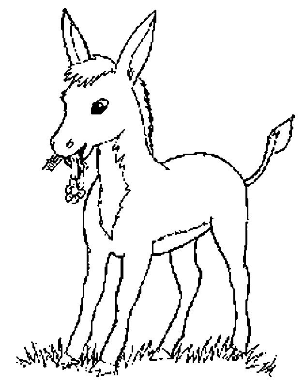 Donkeys-coloring-page-6