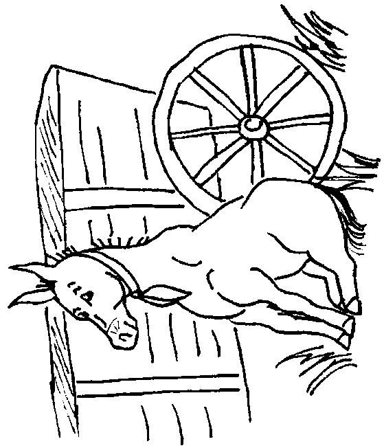 Donkeys-coloring-page-7