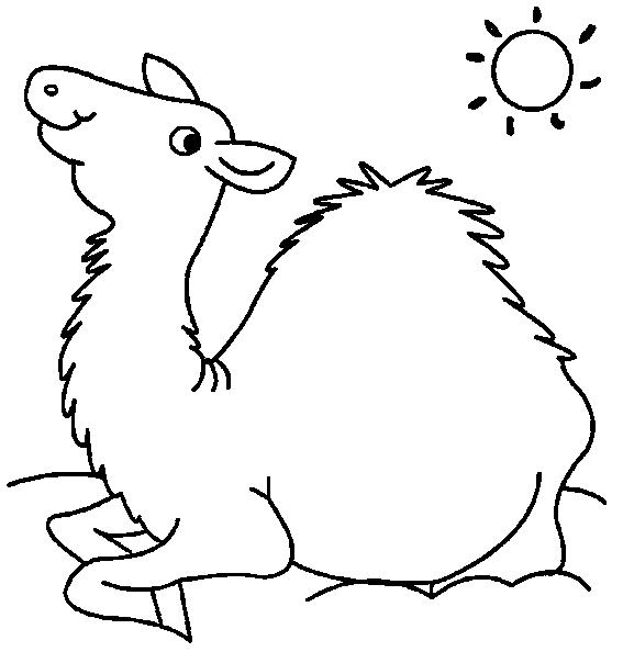 Dromedary-coloring-page-4