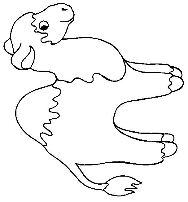 Dromedary-coloring-page-7