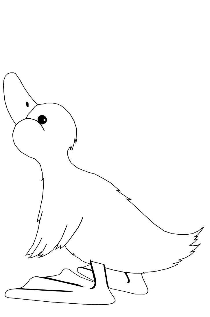 Ducks-coloring-page-4