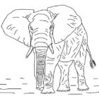 Elephants-coloring-page-13