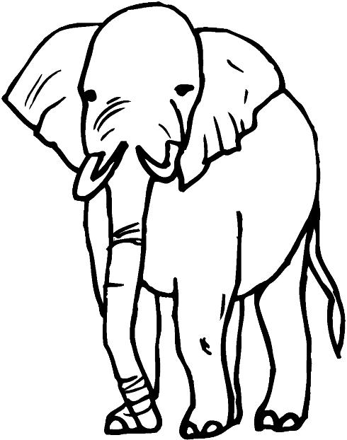 Elephants-coloring-page-21