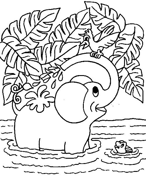 Elephants-coloring-page-23