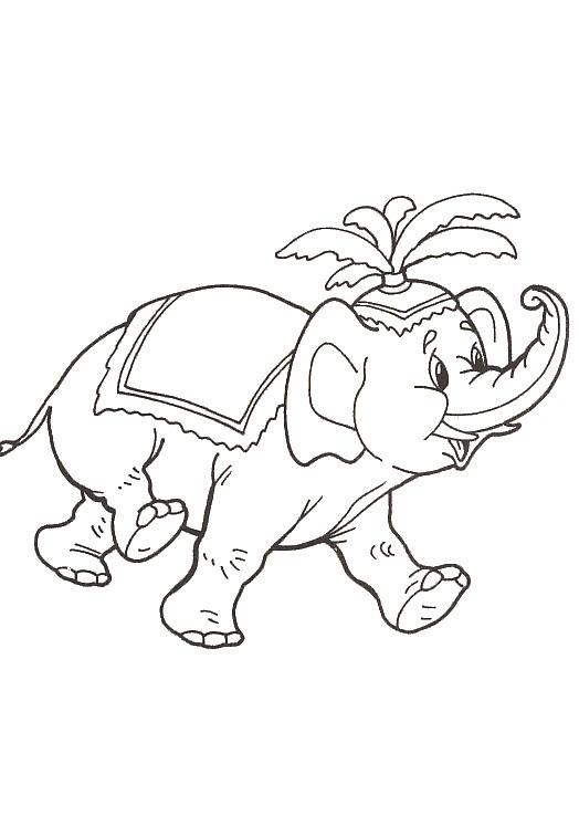 Elephants-coloring-page-43