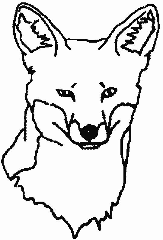 Foxes-coloring-page-14